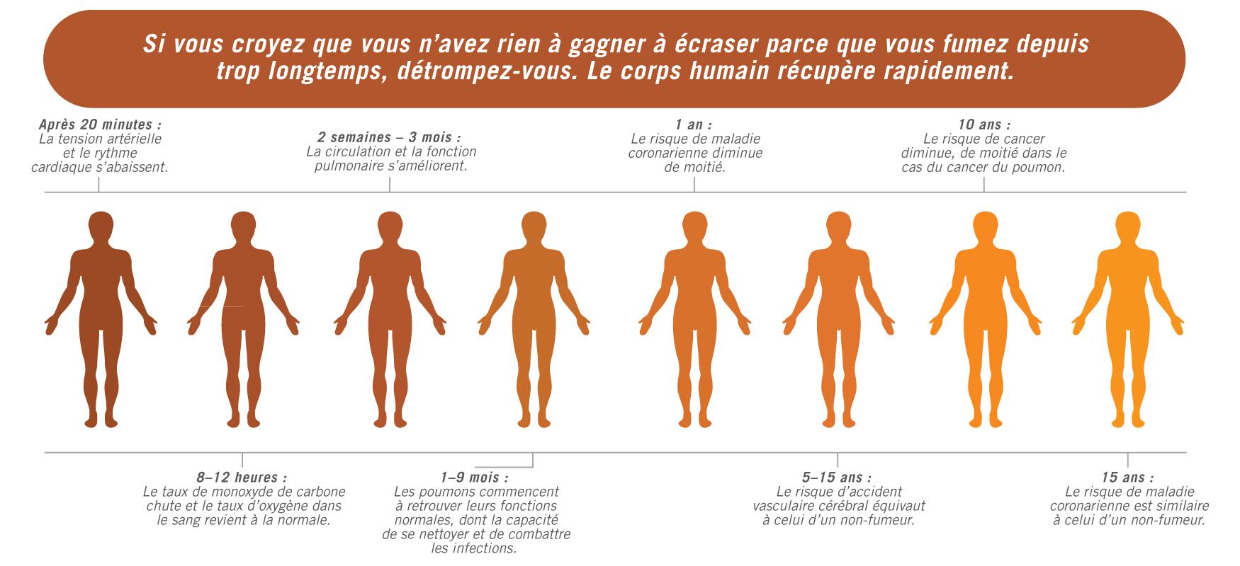 Jetez un coup d'œil au tableau suivant pour constater à quelle vitesse le corps se rétablit lorsqu'on arrête de fumer.